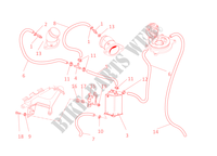 EVAPORATIVE EMISSION SYSTEM (EVAP) pour Ducati Monster 1100 EVO 2011